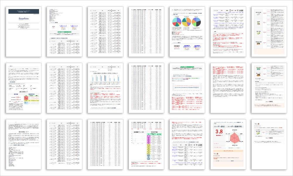 評価レポートの一例(画像イメージ)
