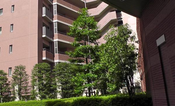 ガーデンアリーナ新百合ヶ丘の画像7枚目(外観、エントランス、前面の通り等)