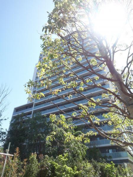 ザパークハウス新宿タワーの外観画像