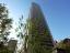 赤坂タワーレジデンス トップオブザヒルのその他(外観、エントランス、前面の通り等)