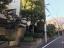 大岡山シティハウス 並木道