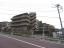 コスモ板橋志村プリオールのその他(外観、エントランス、前面の通り等)